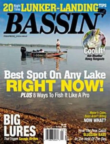 Subscribe to Bassin'
