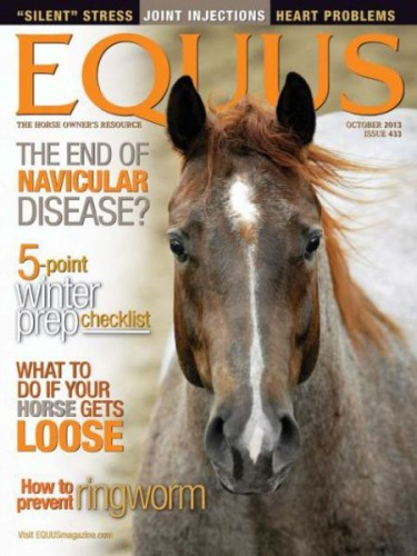 Subscribe to Equus