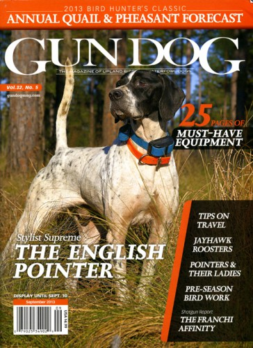 Subscribe to Gun Dog