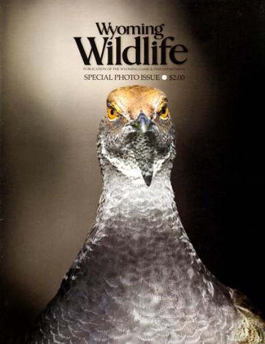Best Price for Wyoming Wildlife Magazine Subscription