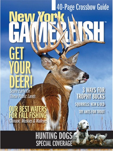 Best Price for New York Game & Fish Magazine Subscription