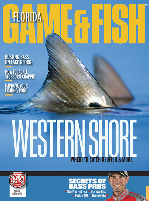 Florida game fish magazine subscription discounts deals for Florida fishing magazine