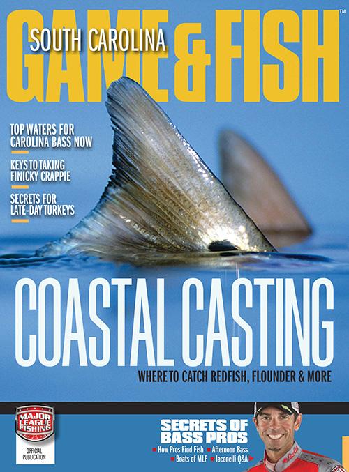 South carolina game fish magazine subscription for Game and fish magazine