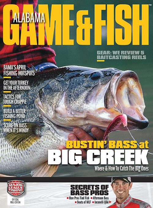 Alabama game fish magazine subscription discounts deals for Alabama game and fish